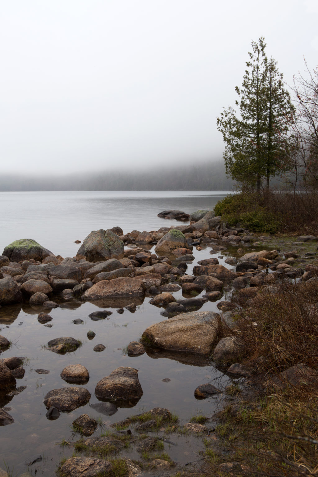 Rocky Lakeshore in the Fog