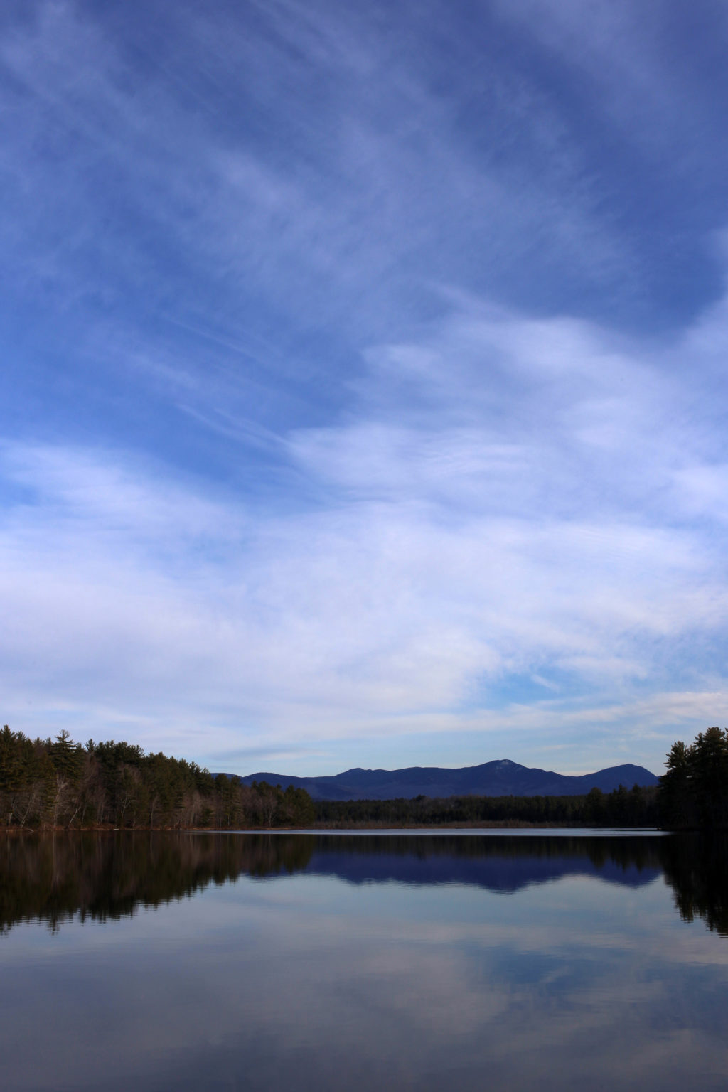 Wispy Clouds Reflected in Still Pond