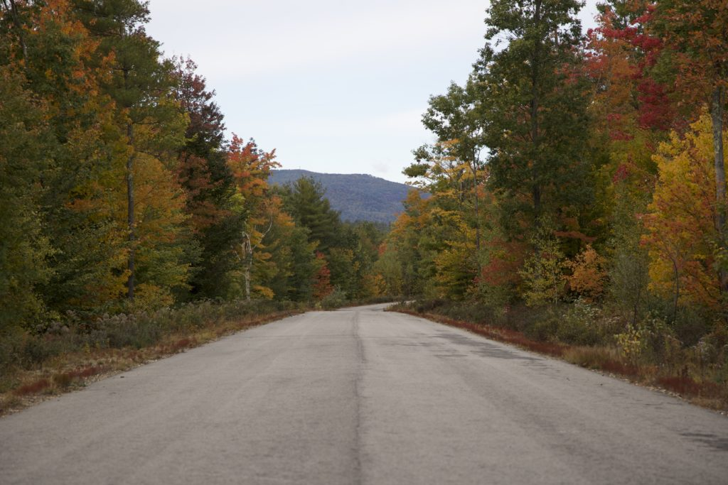 Rural Paved Road in the Fall