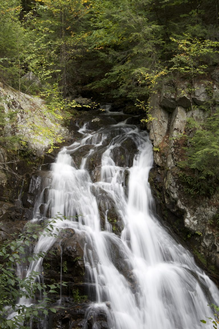 Trickling Waterfall in the Forest