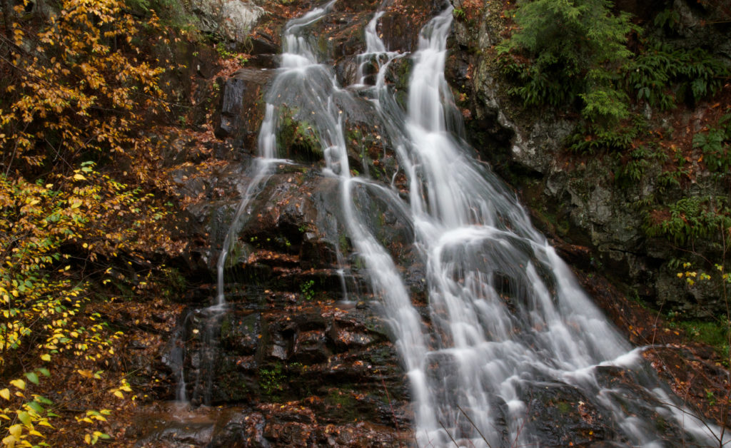 Stream Water and Fall Foliage