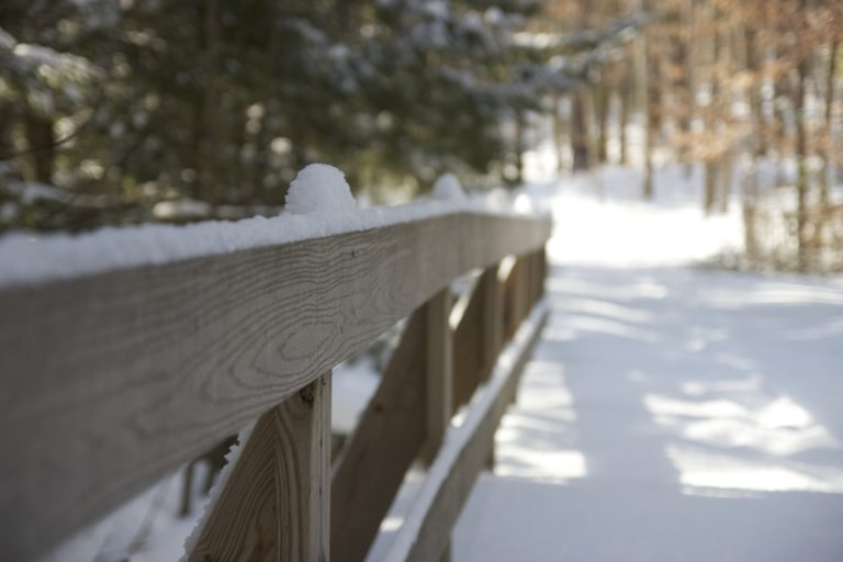 Fresh Snow on Hiking Path