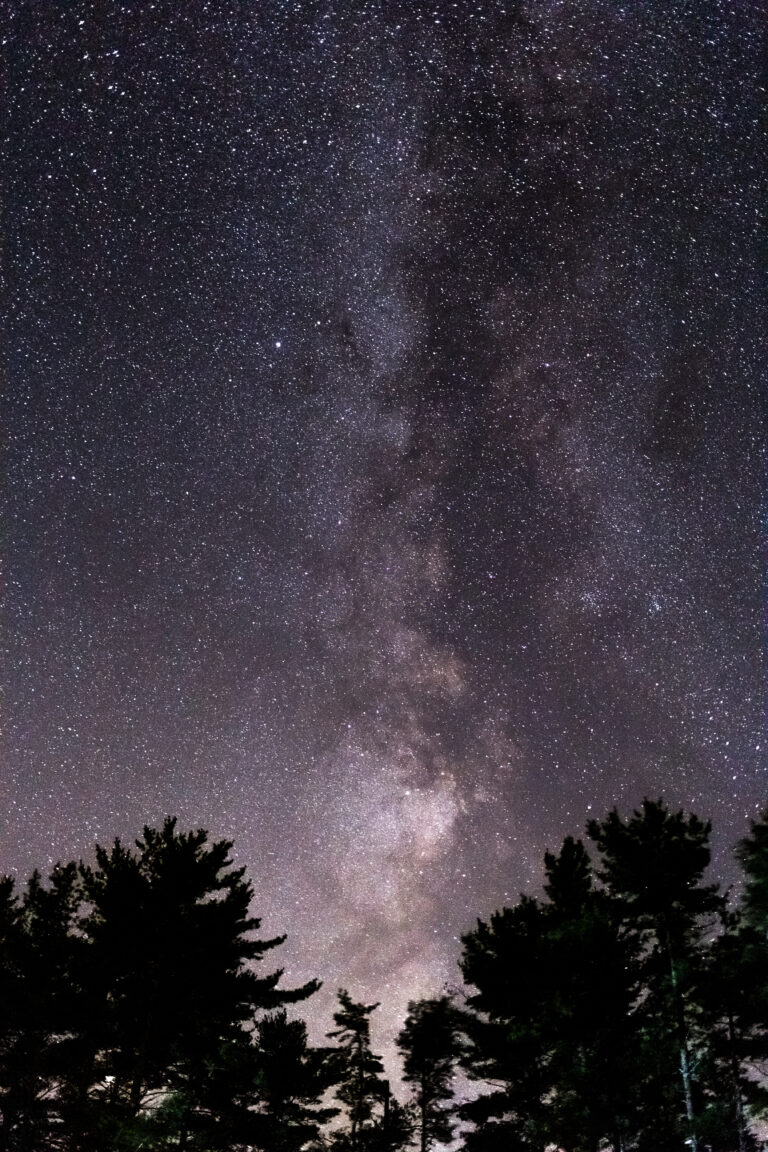 Incredible Milky Way With Trees