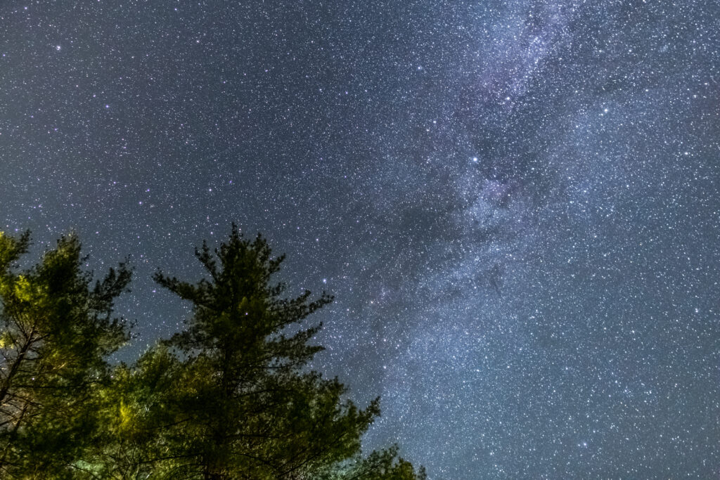 Milky Way Stars Crossing Trees