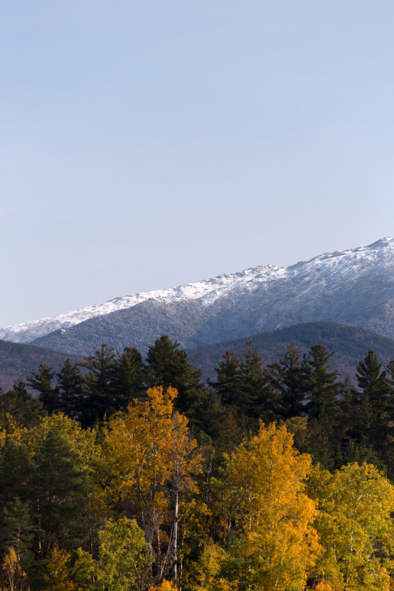 Fresh Snowfall Above Autumn Foliage