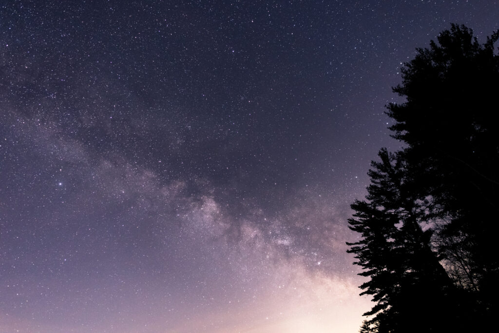 Milky Way Tree Silhouettes