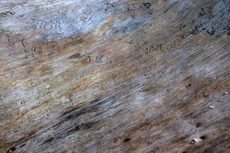 Abstract Wood Texture