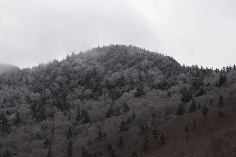 Grey Mountaintop