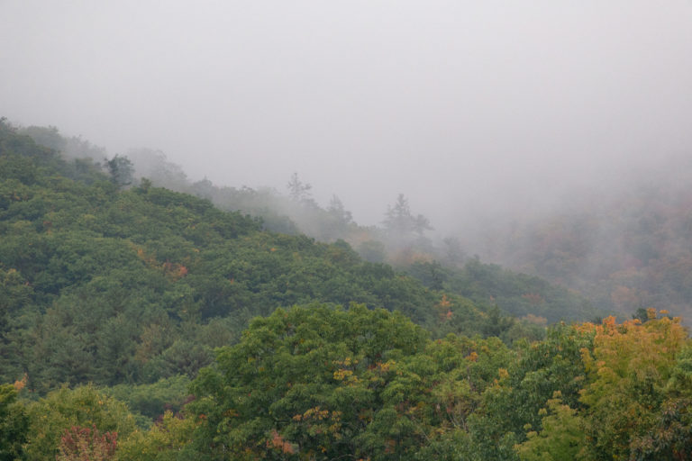 Misty Mountainside