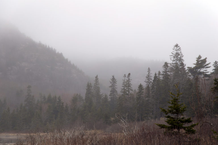 Foggy Mountain Valley