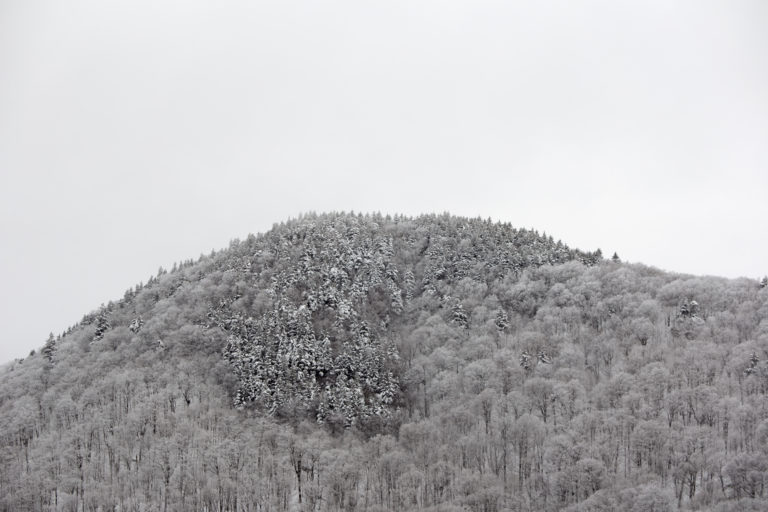 Frosted Mountaintop