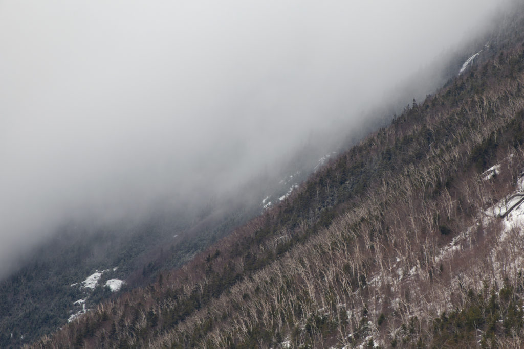 Foggy, Cold Mountainside