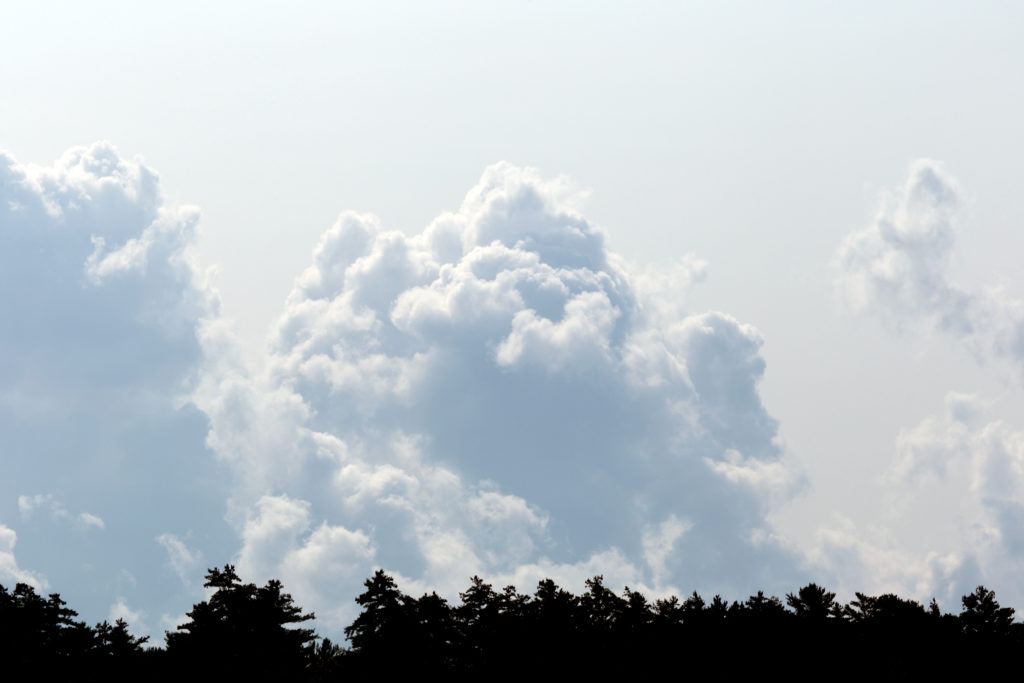 Large Puffy Cloud on the Horizon