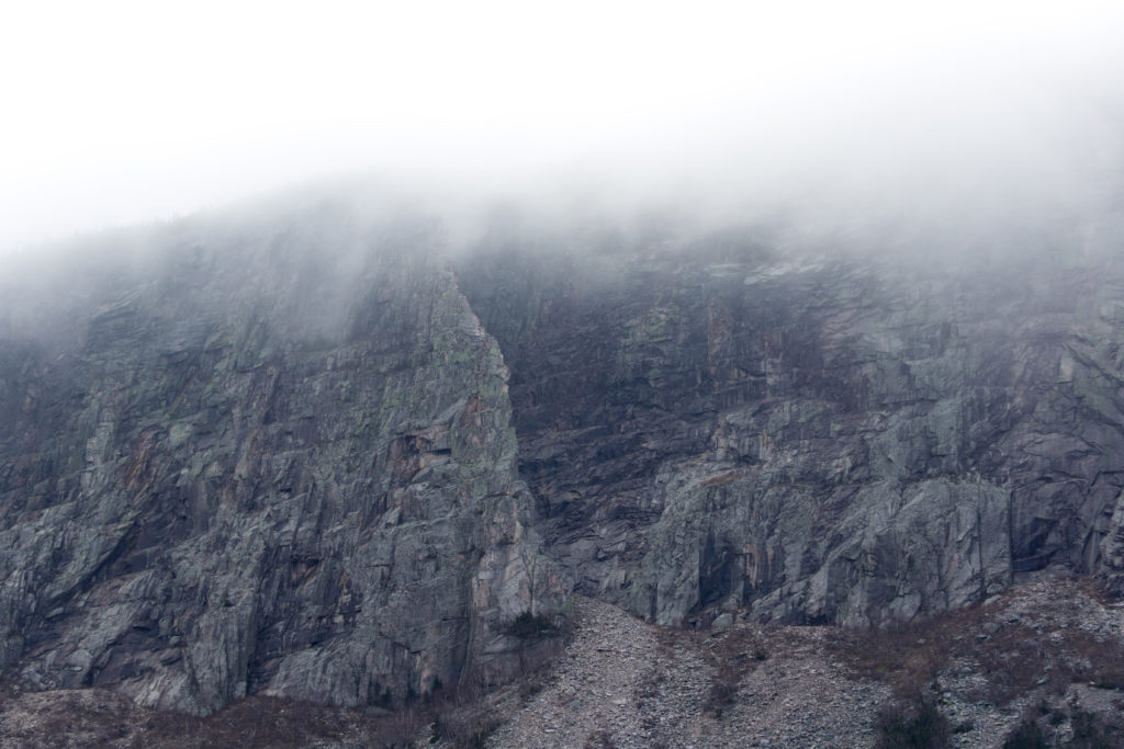 Misty Ledge