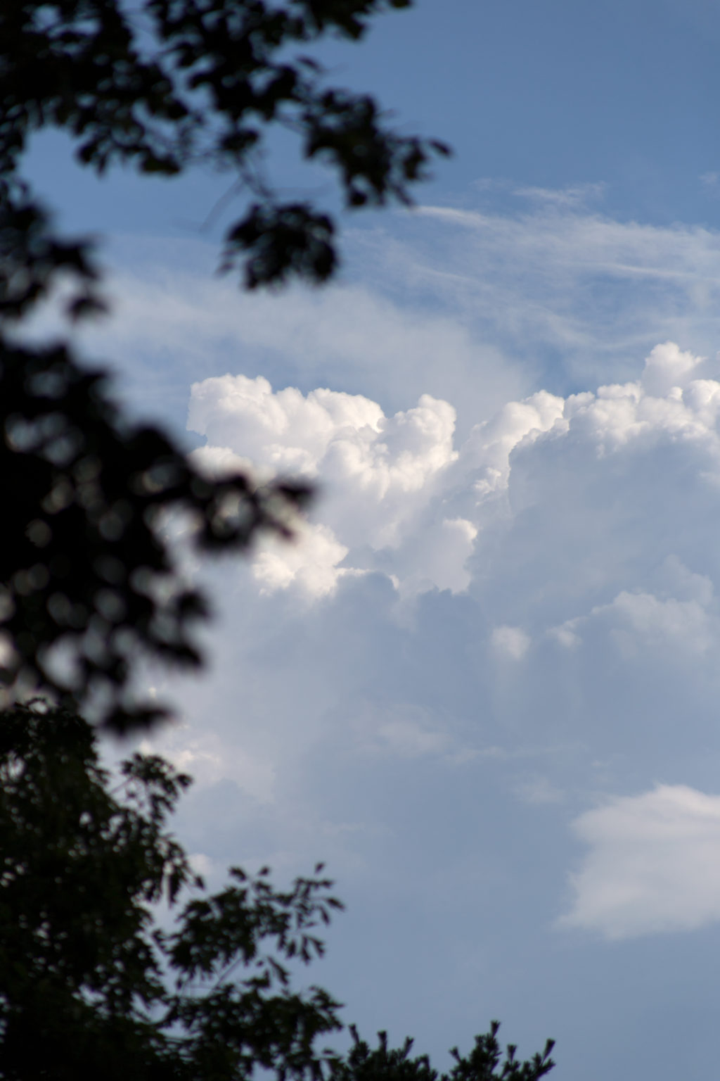 Puffy Clouds in the Distance