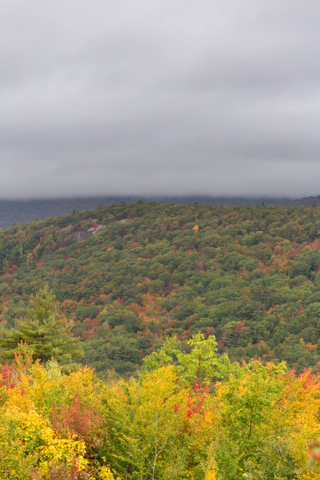 Early Fall Landscape Under Thick Clouds