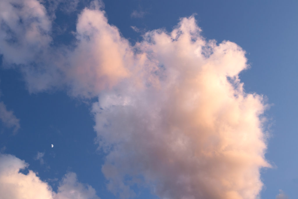 Pale Pink Puffy Cloud