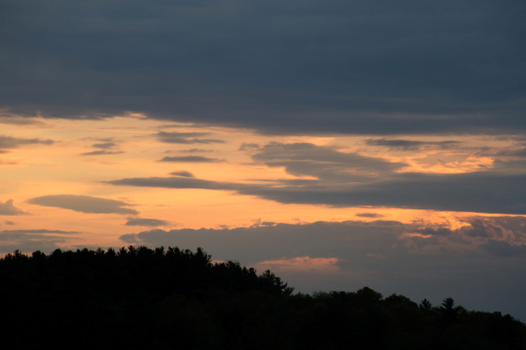 Dusk Clouds and Tree Silhouettes