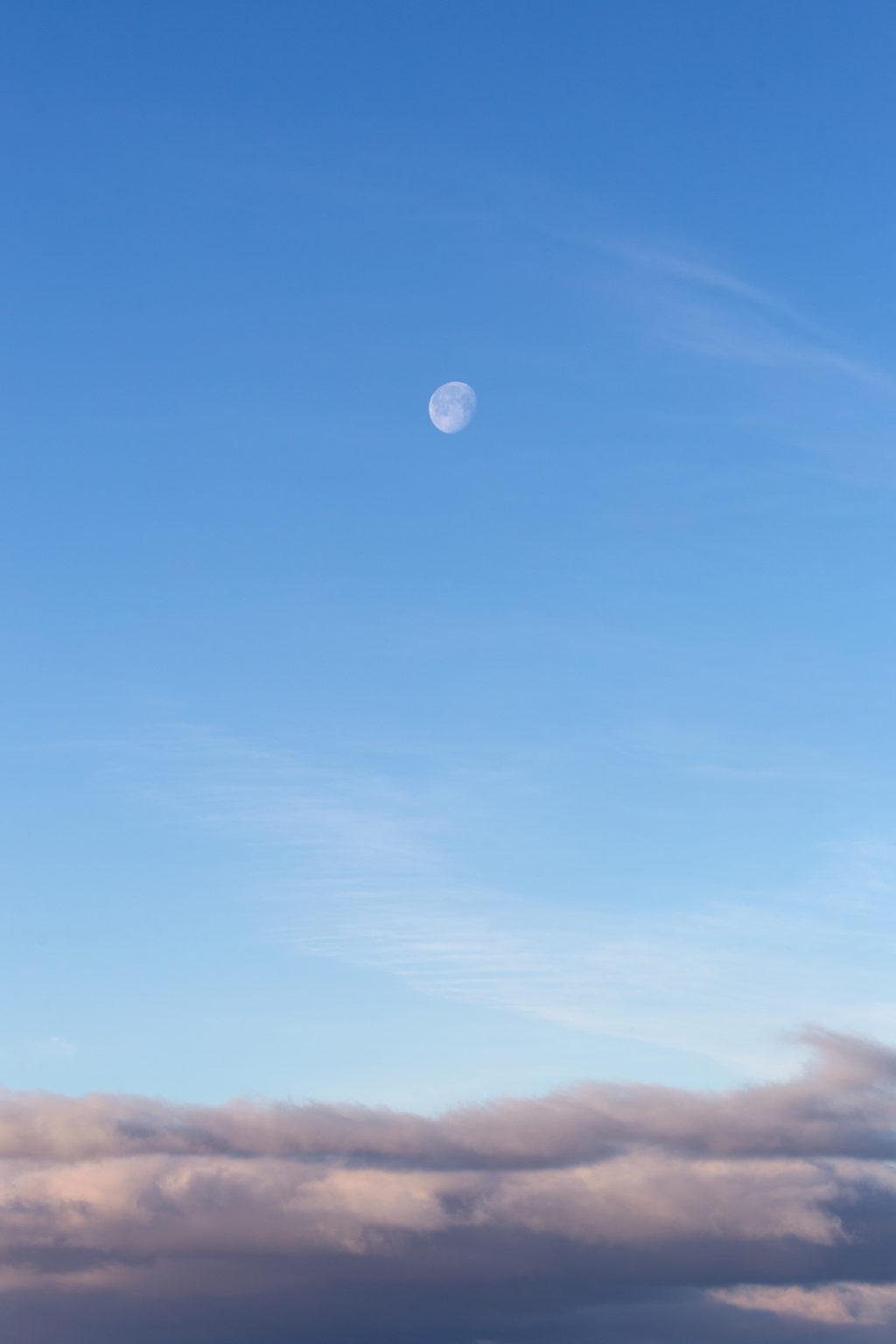 Moon High in the Sky