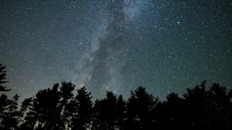 Milky Way Pan Over Tree Silhouettes